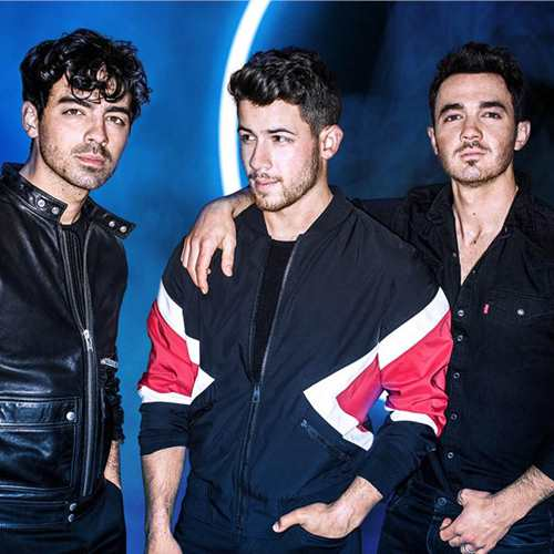 The Jonas Brothers: Remember This Tour
