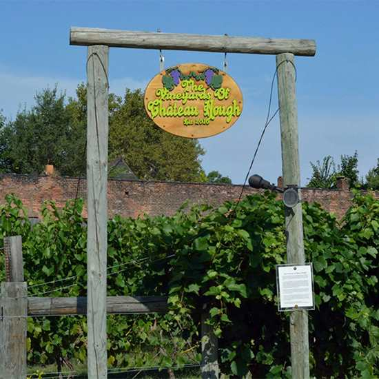 The Vineyards and Winery at Chateau Hough