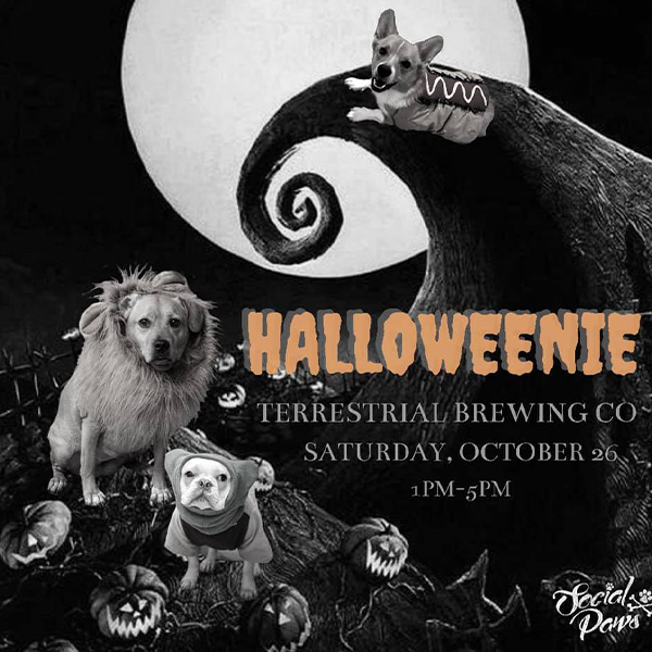 Halloweenie 2.0